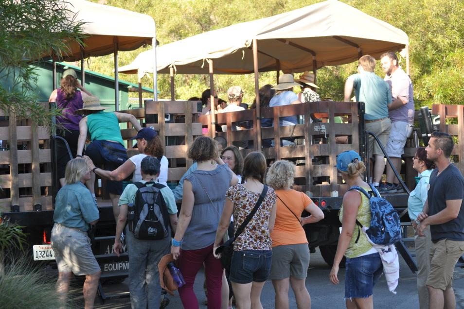Teachers prepare for a jeep caravan safari at the San Diego Zoo Safari Park