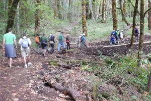 Mulkey Ridge Trail walk